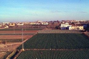 Horta desde mistral 1981_01