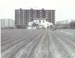 única finca de la calle Ingeniero Alberto Oñate, con Alquería ya desaparecida. Foto realizada desde lo que hoy es la Ronda norte. Mediados de los 80